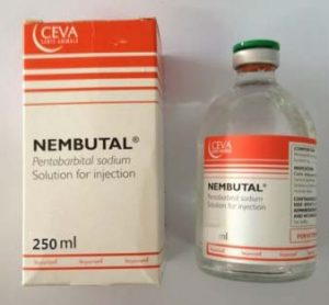 Buy Nembutal Pentobarbital 250mg ml ,